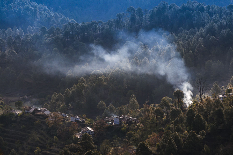 binsar-landscape-forest-fog-beautiful-light-himalaya-mountains-smoke-smog-good-morning